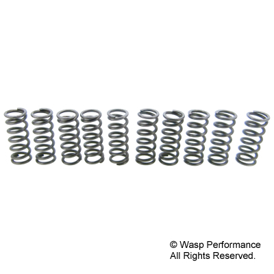 SIP Race XXXL Cosa Type II Clutch Spring Set (10)