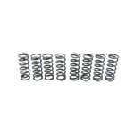 SIP Race XXXL Cosa Type II Clutch Spring Set (8)